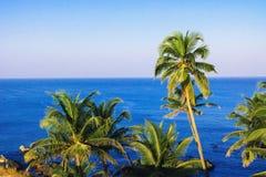 Тропический ландшафт взгляда рая прибрежный стоковая фотография rf