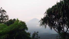 Тропический ландшафт горы в джунглях с голубым небом, облаками и туманом акции видеоматериалы