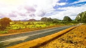 Тропический ландшафт, ландшафт дождевого леса, ландшафт лета, красивый ландшафт Стоковое Фото