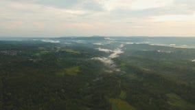 Тропический ландшафт на заходе солнца, Бали, Индонезии видеоматериал