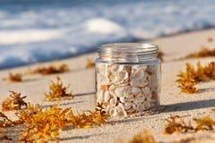 Тропический ландшафт песчаного пляжа и стекло раздражают с раковинами Стоковые Фотографии RF