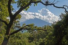 Тропический ландшафт с вулканом Стоковые Изображения RF