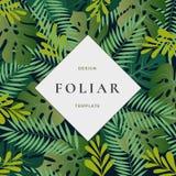 Тропический лес выходит абстрактная предпосылка вектора с шаблоном знамени Лист ладони Monstera, папоротник и другая листва с иллюстрация штока