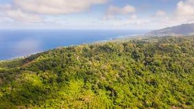 Тропический лес на большом острове, взгляд сверху Массив леса на холмах тропического острова стоковое фото rf