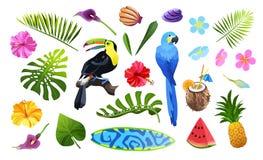 Тропический набор объектов бесплатная иллюстрация