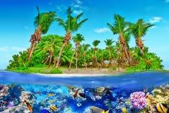 Тропический остров в океане и красивом подводном мире Стоковые Фото