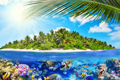 Тропический остров в океане и красивом подводном мире Стоковые Изображения RF