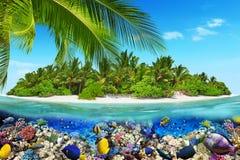 Тропический остров в океане и красивом подводном мире Стоковая Фотография RF