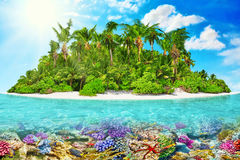 Тропический остров в океане и красивом подводном мире Стоковое фото RF