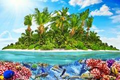 Тропический остров в океане и красивом подводном мире Стоковые Изображения