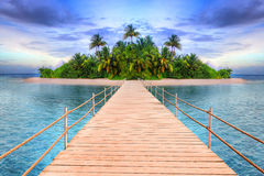 Тропический остров Мальдивов Стоковые Фото