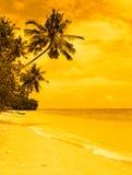 Тропический остров на заходе солнца Стоковое Изображение