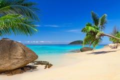 Тропический пейзаж пляжа Стоковое Изображение