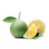 Тропический плодоовощ: Изолят сладкого апельсина на белой предпосылке Стоковые Изображения