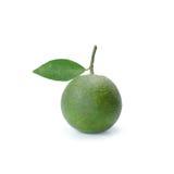 Тропический плодоовощ: Изолят сладкого апельсина на белой предпосылке Стоковое Фото