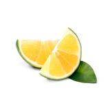 Тропический плодоовощ: Изолят сладкого апельсина на белой предпосылке Стоковые Изображения RF