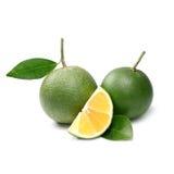 Тропический плодоовощ: Изолят сладкого апельсина на белой предпосылке Стоковые Фотографии RF