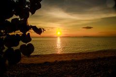 Тропический пляж захода солнца Красивая предпосылка стоковые изображения