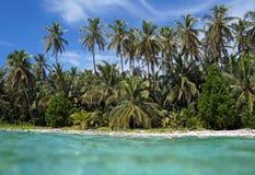 Тропический пляж от поверхности воды Стоковые Изображения
