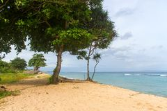 Тропический пляж с желтым песком, лазурным океаном и зелеными деревьями Стоковые Изображения RF