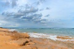 Тропический пляж с желтым песком, лазурным океаном и зелеными деревьями Стоковая Фотография RF