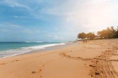 Тропический пляж с желтым песком, лазурным океаном и зелеными деревьями Стоковое Изображение RF