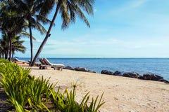 Тропический пляж с deckchairs, зонтиками, и кокосовой пальмой стоковые фотографии rf
