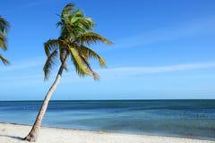 Тропический пляж, Key West Стоковое Изображение