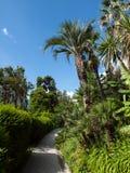 Тропический путь Стоковое Изображение RF