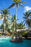 Тропический плавательный бассеин Стоковые Изображения