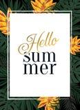 Тропический плакат вектора с тропическими листьями и цветками Стоковое Изображение