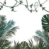 Тропический плакат вектора с тропическими листьями и цветками Стоковые Изображения RF
