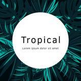Тропический плакат вектора с тропическими листьями и цветками Стоковое Изображение RF