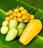 Тропический плодоовощ Стоковая Фотография