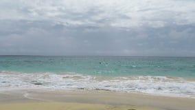 Тропический пляж в Африке видеоматериал