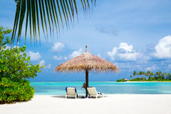 Тропический пляж в Мальдивах стоковые фотографии rf