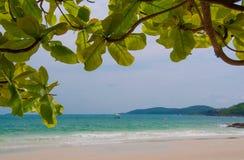 Тропический пляж в Таиланде Стоковая Фотография