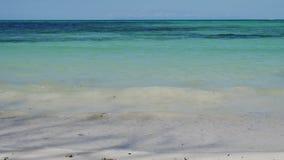 Тропический пляж в UHD видеоматериал