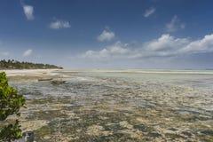 Тропический пляж Занзибара, панорамная фотография стоковое фото