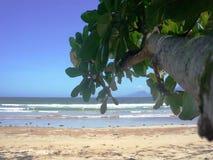 Тропический пляж и голубой океан белизна песка Seascape Остров Palawan сток-видео