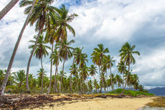 Тропический пляж и серое небо стоковые фото