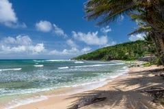 Тропический пляж на карибском острове Стоковое Изображение RF