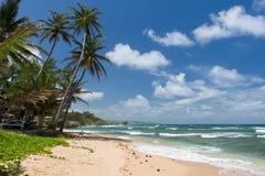 Тропический пляж на карибском острове Стоковая Фотография RF