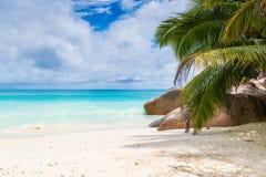 Тропический пляж на солнечный день Стоковые Изображения RF