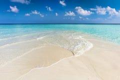 Тропический пляж с белым песком и ясным океаном бирюзы Мальдивские острова стоковое изображение rf