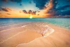 Тропический пляж с белым песком и ясным океаном бирюзы Maldiv стоковое изображение rf