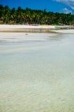 Тропический пляж с белым песком с зелеными пальмами и припаркованными рыбацкими лодками в песке Экзотический рай острова Стоковые Изображения