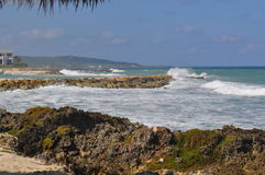 Тропический пляж с грубым прибоем Стоковые Изображения