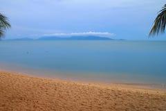 Тропический пляж с пальмами острова Стоковое Изображение RF