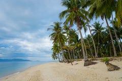 Тропический пляж с пальмой против облачного неба Стоковые Фото